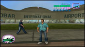 Vice City Patrol Invest Group