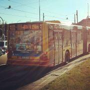 polonia_bus_2.jpg